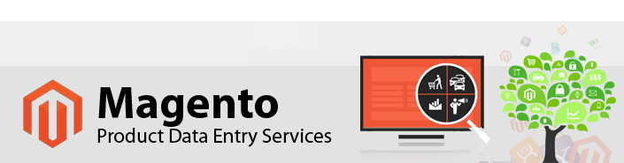 Online Store Data Entry